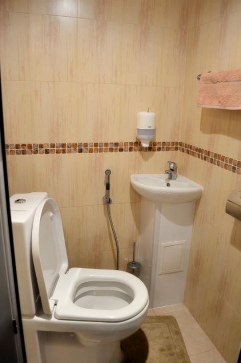 угловая раковина для маленького туалета фото